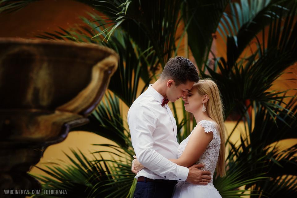 Sesja ślubna na Teneryfie | Teneryfa zdjęcia ślubne